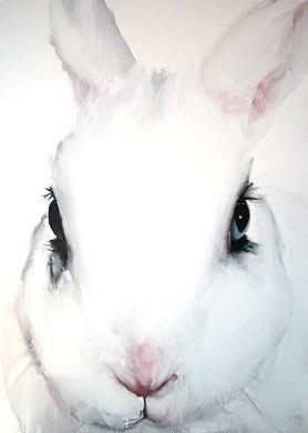 20080410171620-conejo.jpg