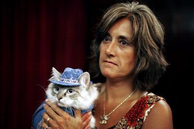 Gatos a la moda 1