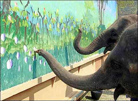 Inteligencia de Elefante